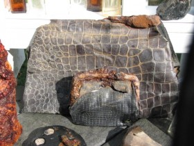 Lizard Skin Pocketbook