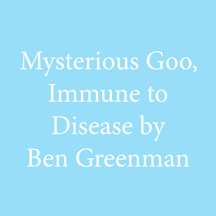 Mysterious Goo by Ben Greenman.jpg