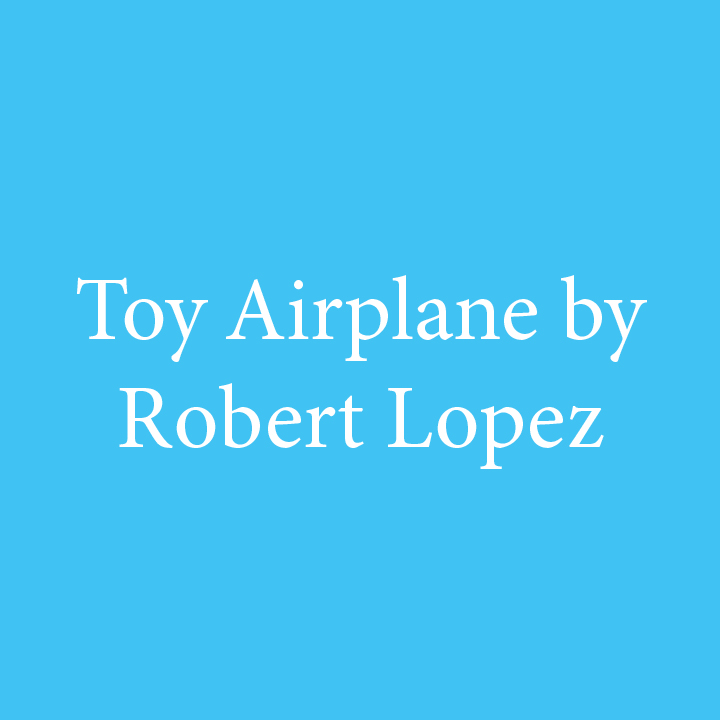 Toy Airplane by Robert Lopez.jpg