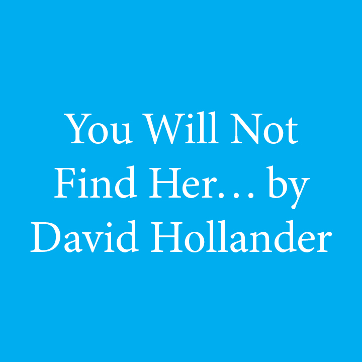 You Will Not Find Her by David Hollander.jpg