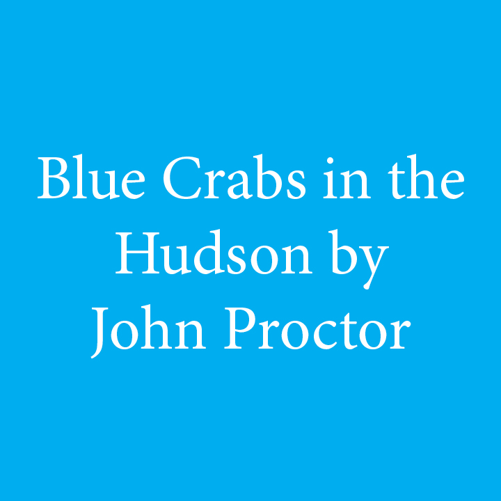 Blue Crabs in the Hudson by John Proctor.jpg