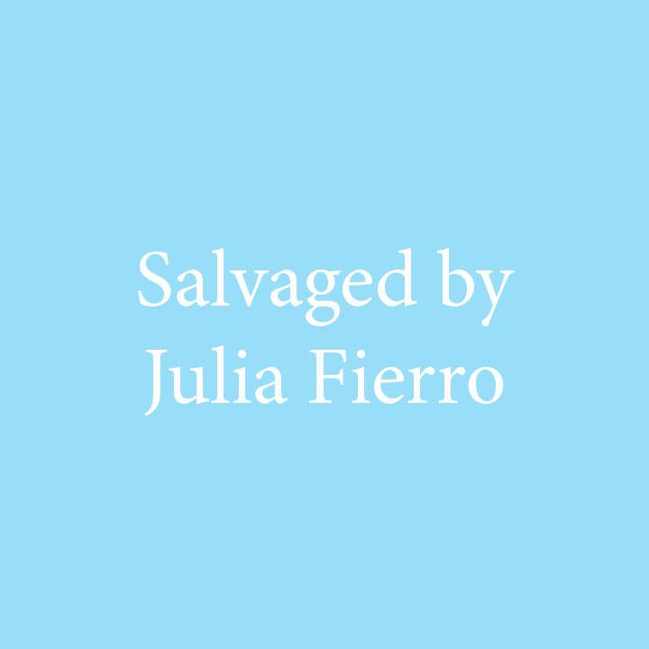 Salvaged by Julia Fierro.jpg
