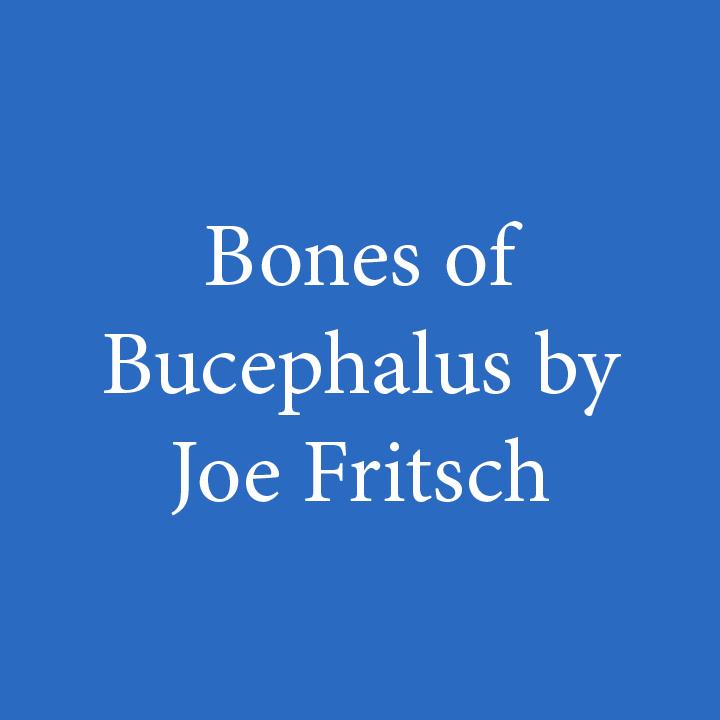 Bones of Bucephalus by Joe Fritsch.jpg