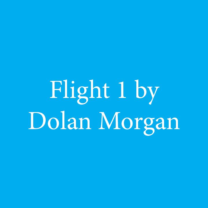Flight 1 by Dolan Morgan.jpg