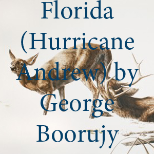 Boorujy Hurricane.jpg