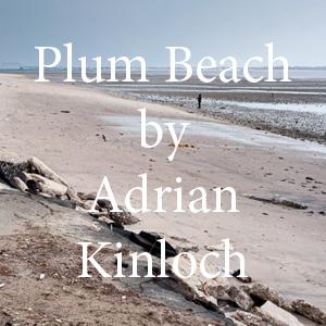 Kinloch Plum Beach.jpg