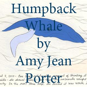 Porter Humpback Whale.jpg