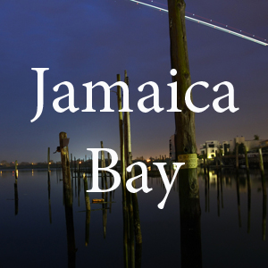 Jamaica Bay2 pc Nate Dorr.jpg