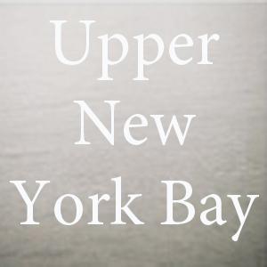 upper new york bay.jpg