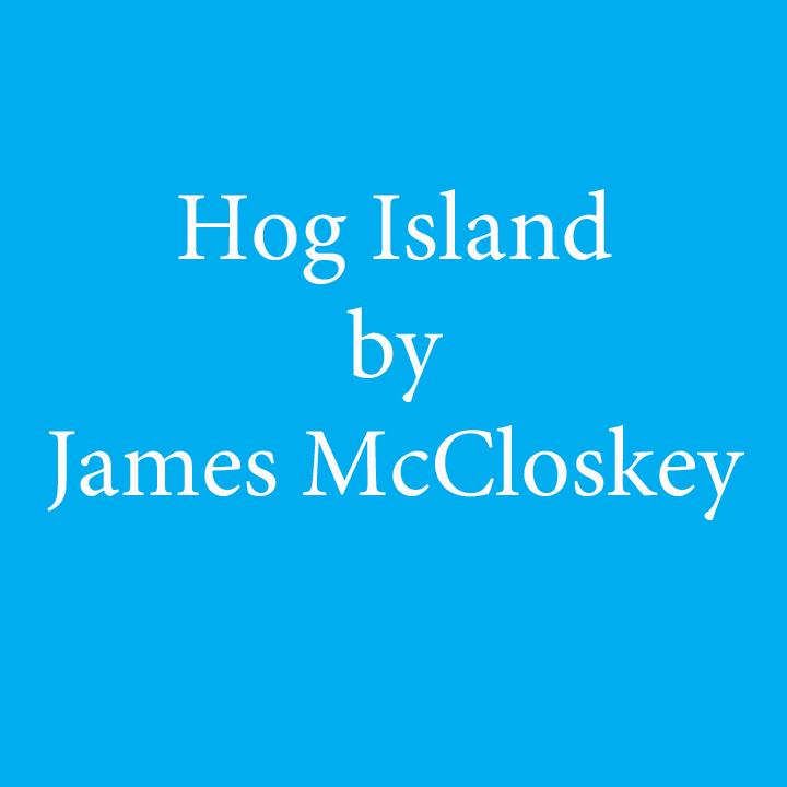 hog island by james mccloskey.jpg