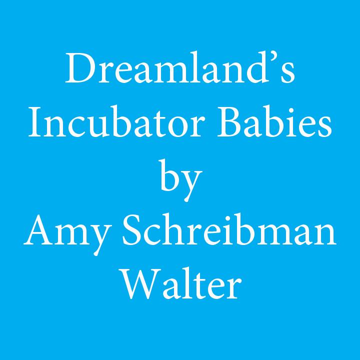 dreamlands incubator babies by amy schreibman walter.jpg