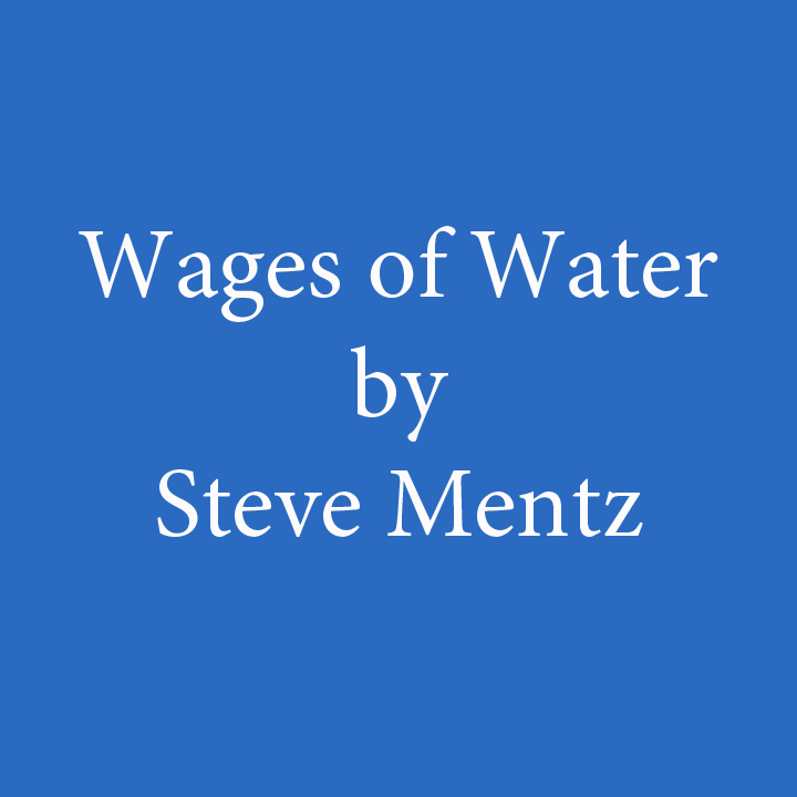 Wages of Water by Steve Mentz.jpg