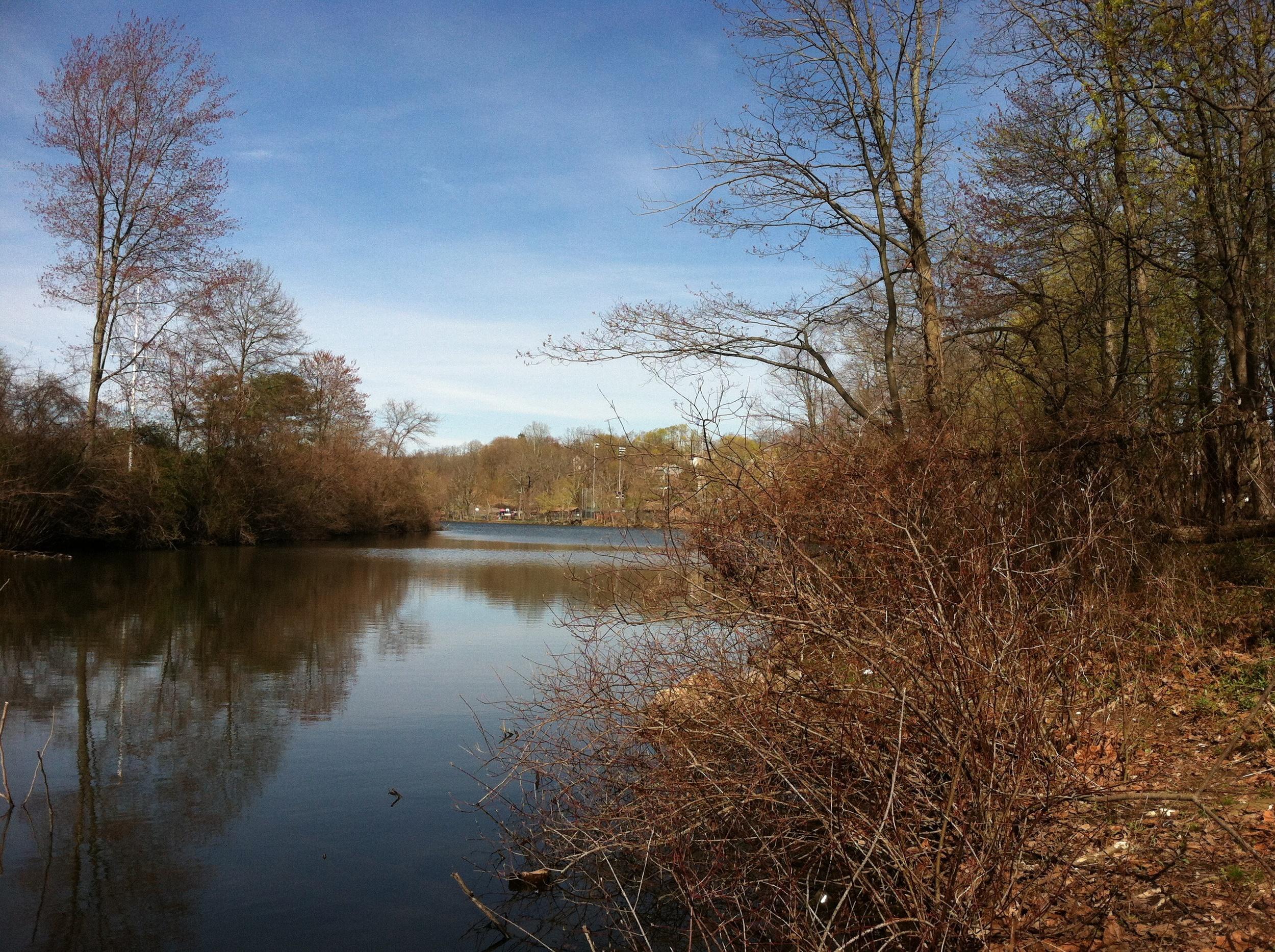 Spring on Silver Lake