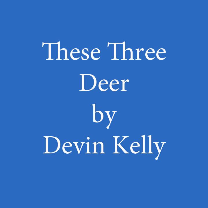 these three deer by devin kelly.jpg
