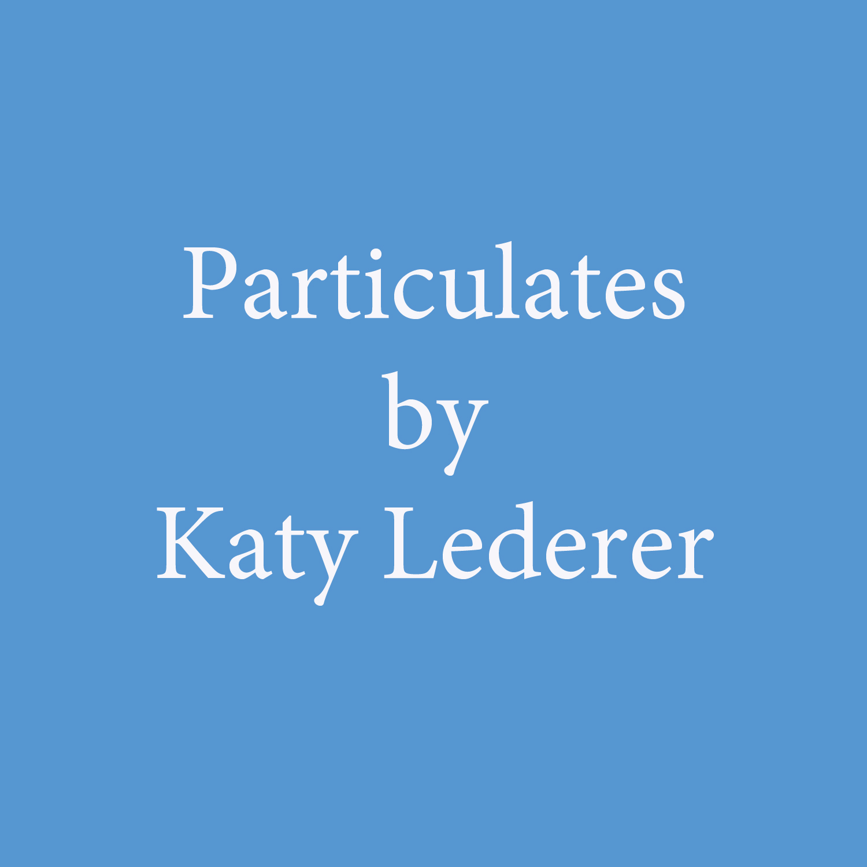 particulates by katy lederer.jpg