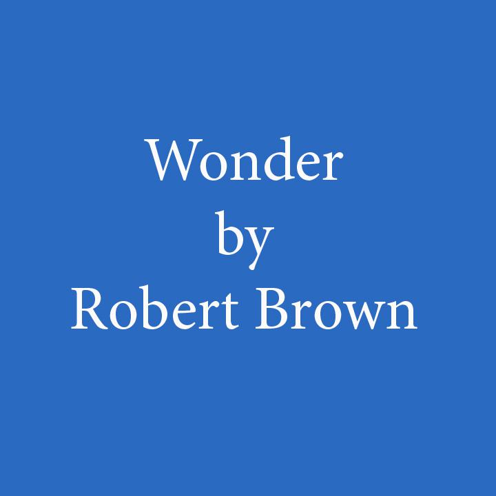 Wonder by Robert Brown.jpg