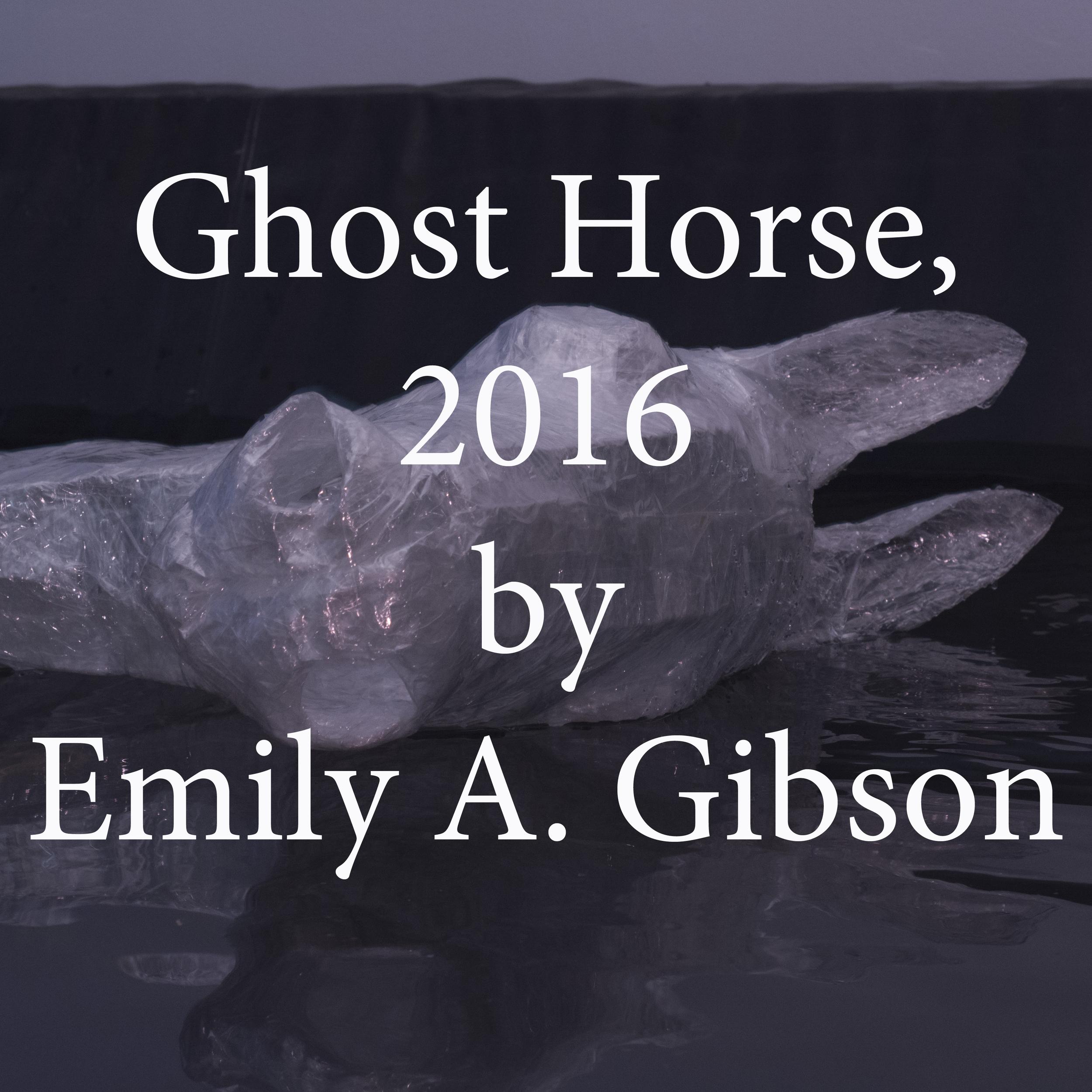ghost horse emily a gibson.jpg