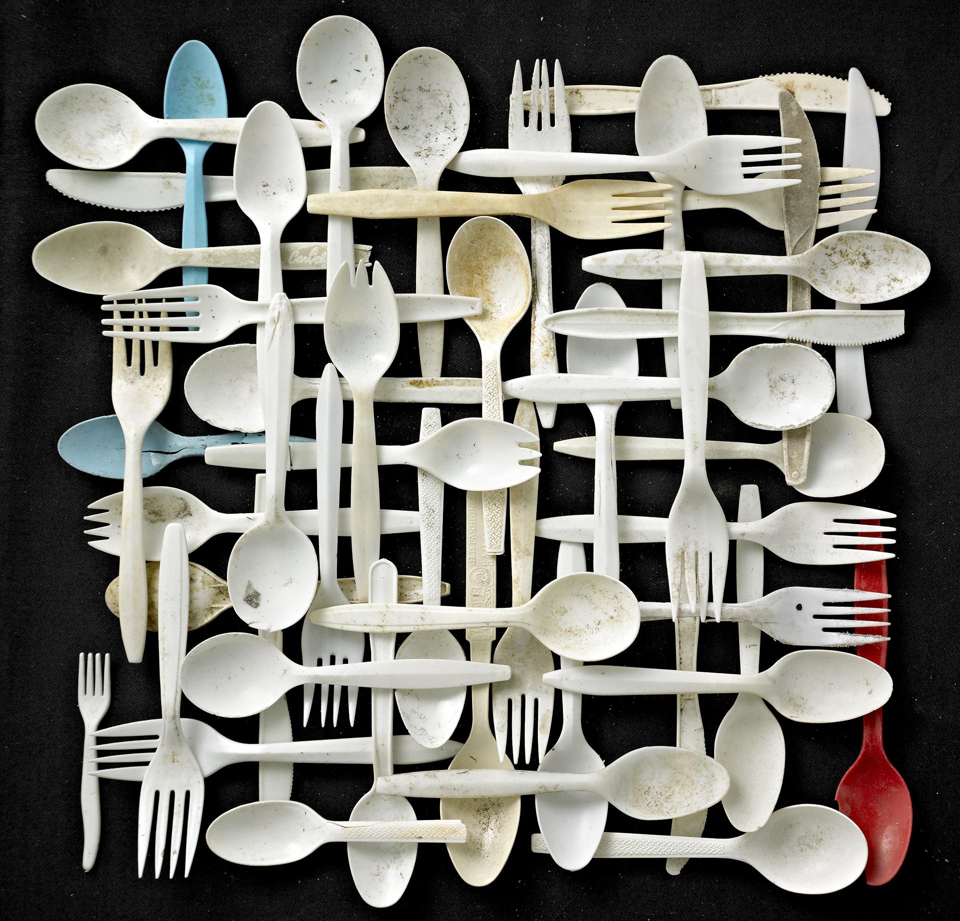 t_BRosenthal_Forks_Spoons.jpg