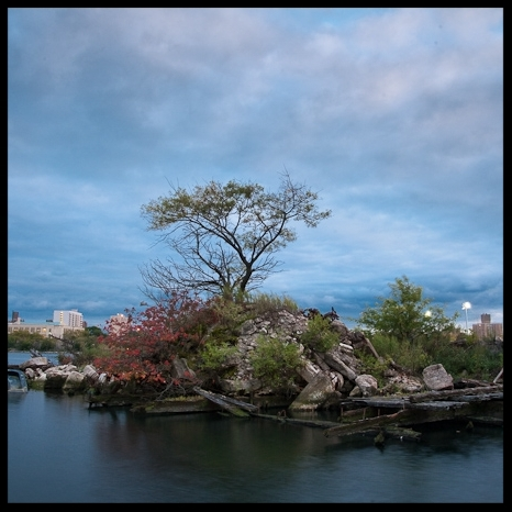 Island Growing Out of a Barge by Adrian Kinloch