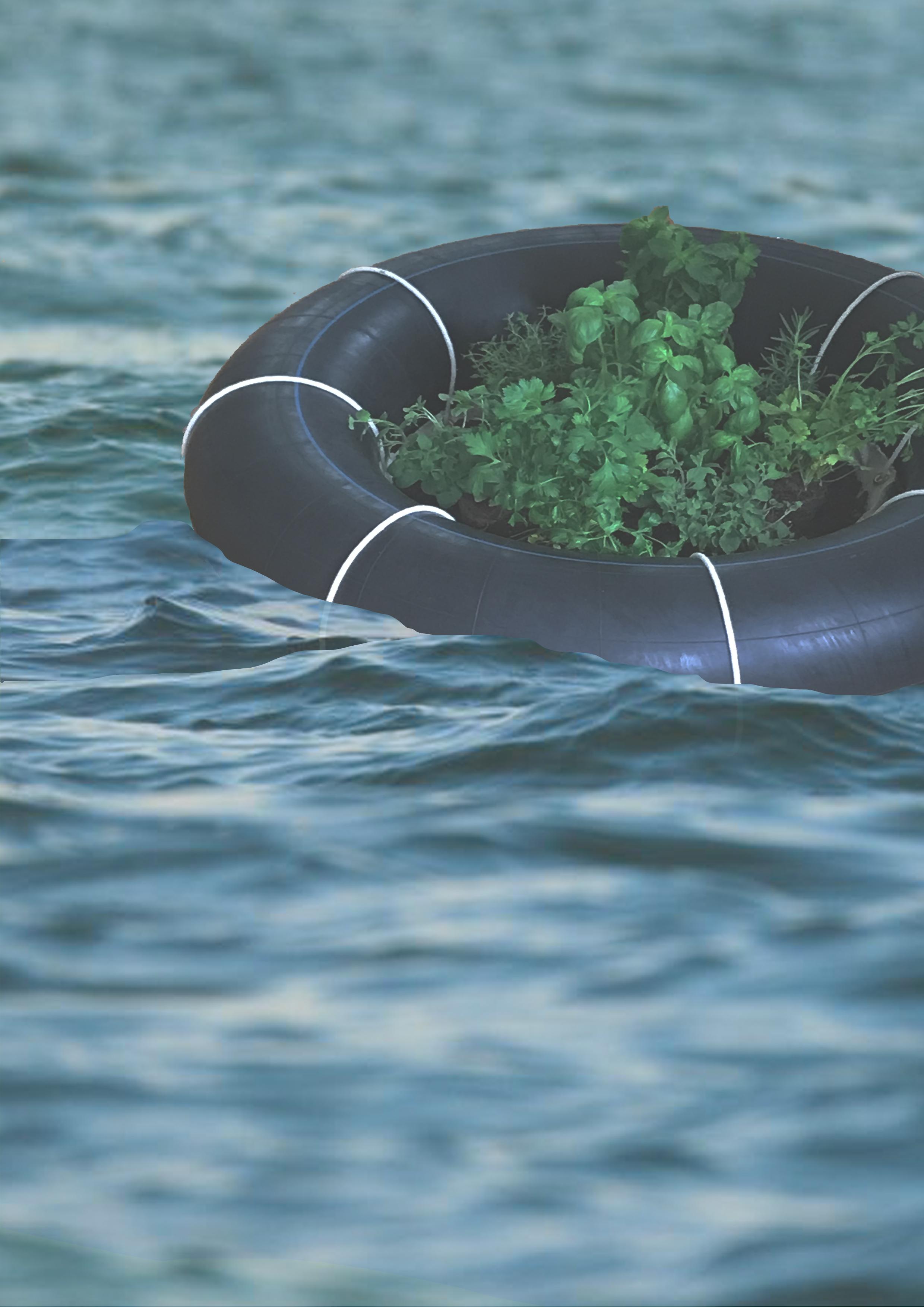 Floating garden.jpg