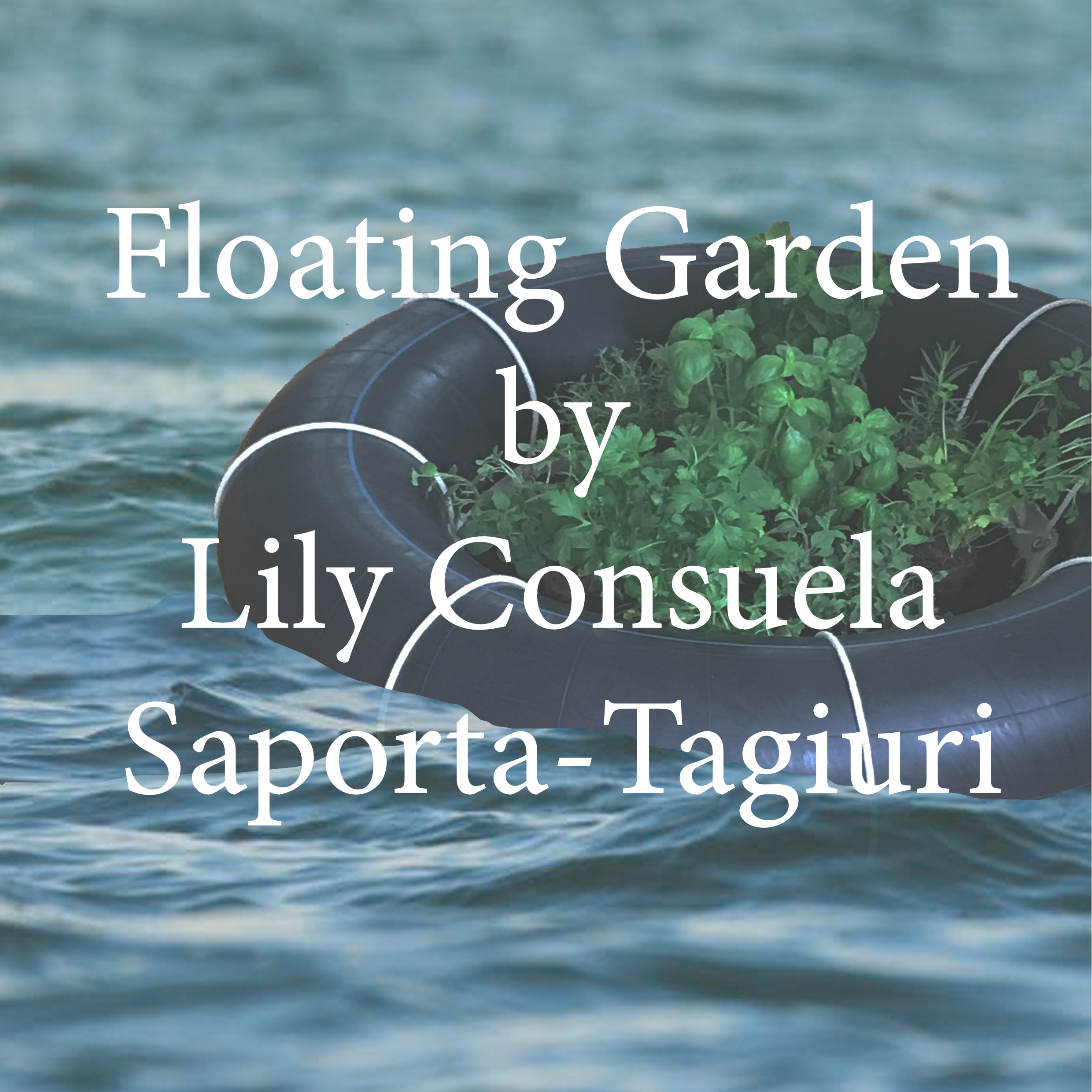Tagiuri Floating garden.jpg