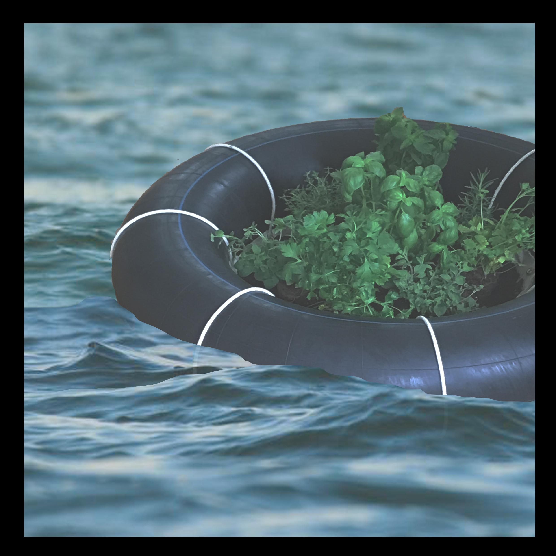 Floating Garden by Lily Consuela Saporta-Tagiuri