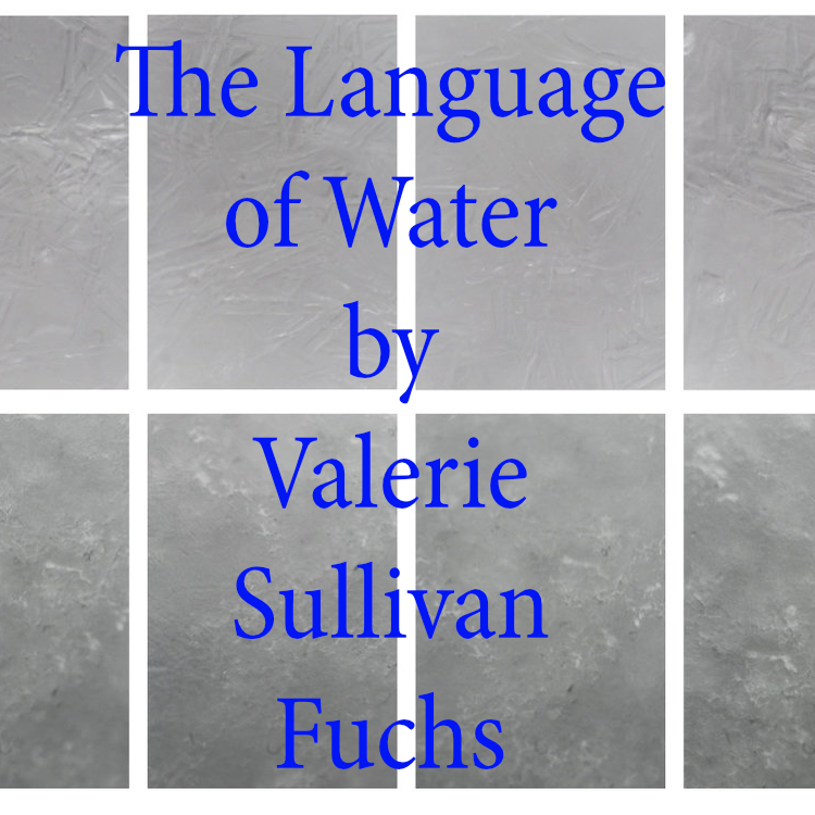Fuchs Language of Water .jpg