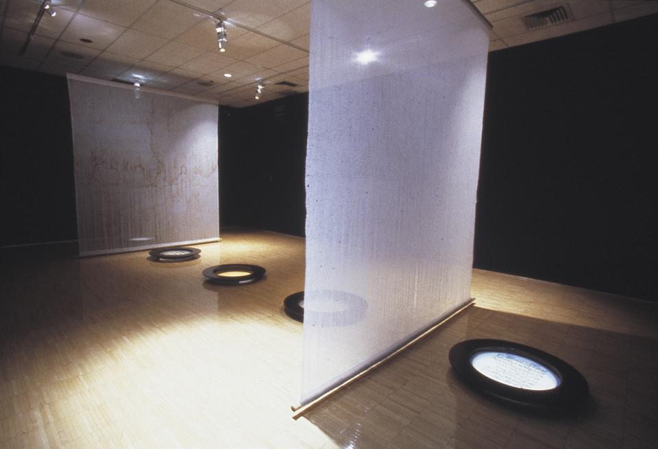 dissolution 2002 14 ft x 20 ft x 30 ft mixed media installation