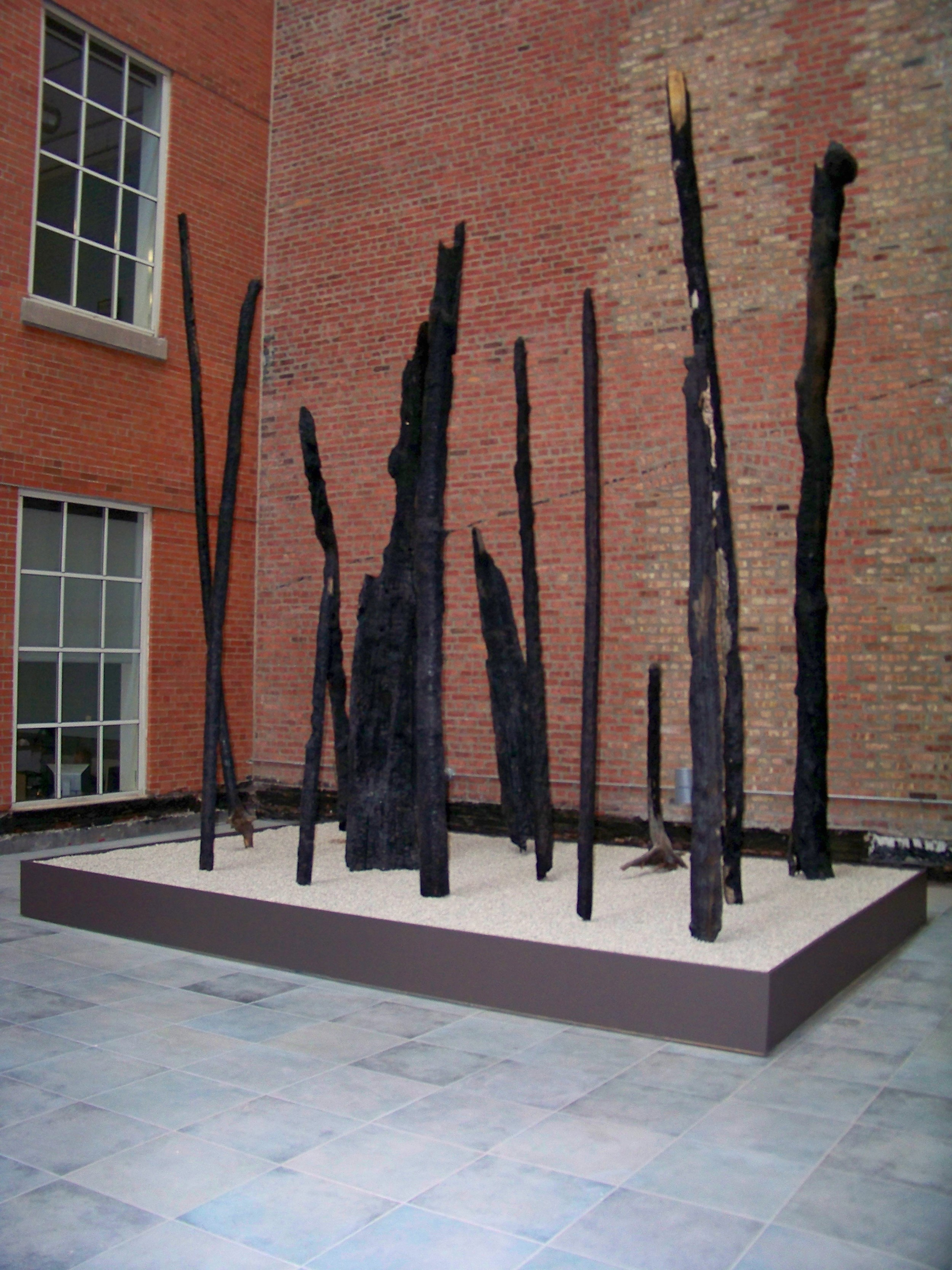 019 - trees of aspen.JPG