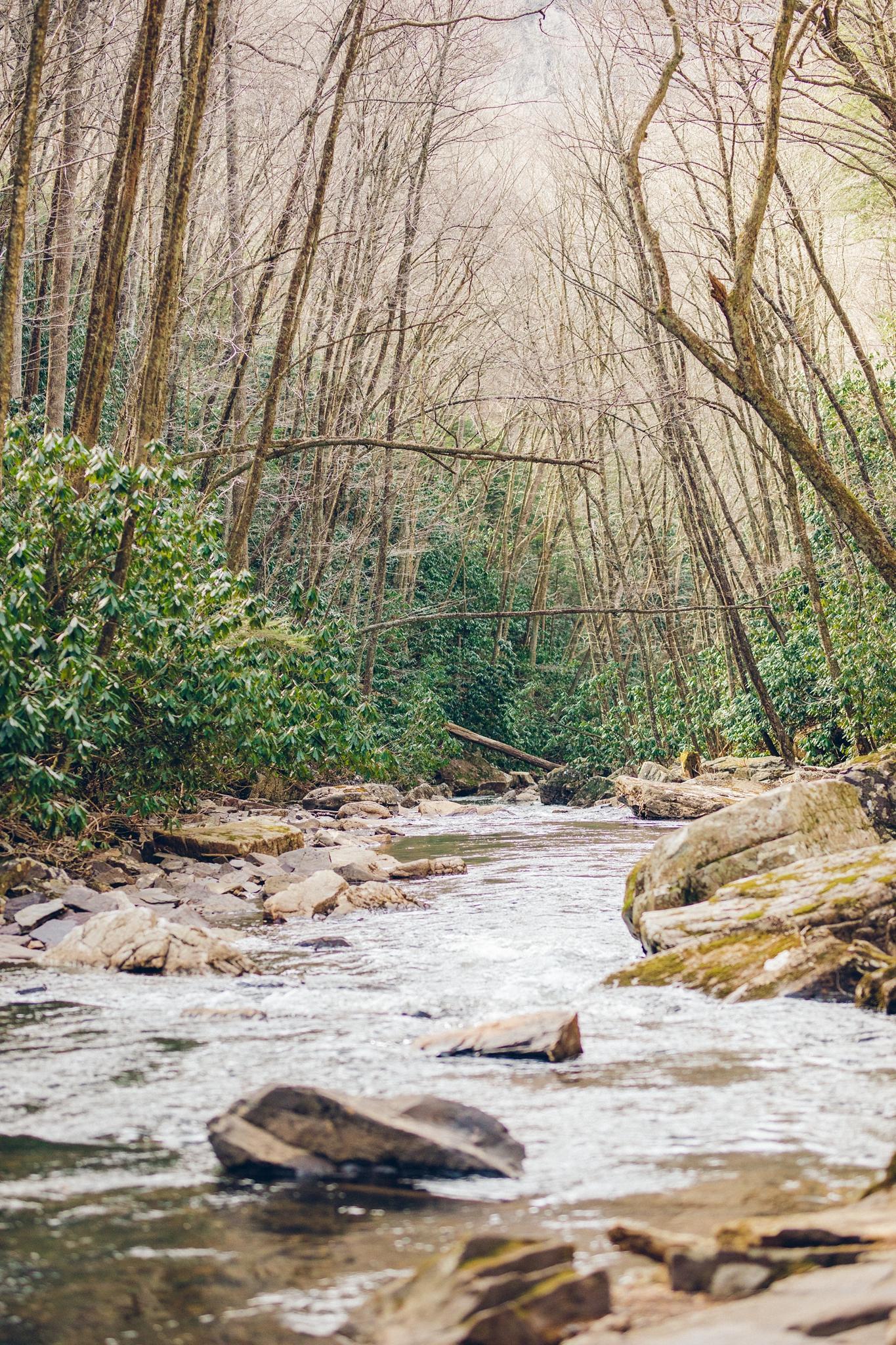 CascadesWaterfall_EngagementSession_0071.jpg