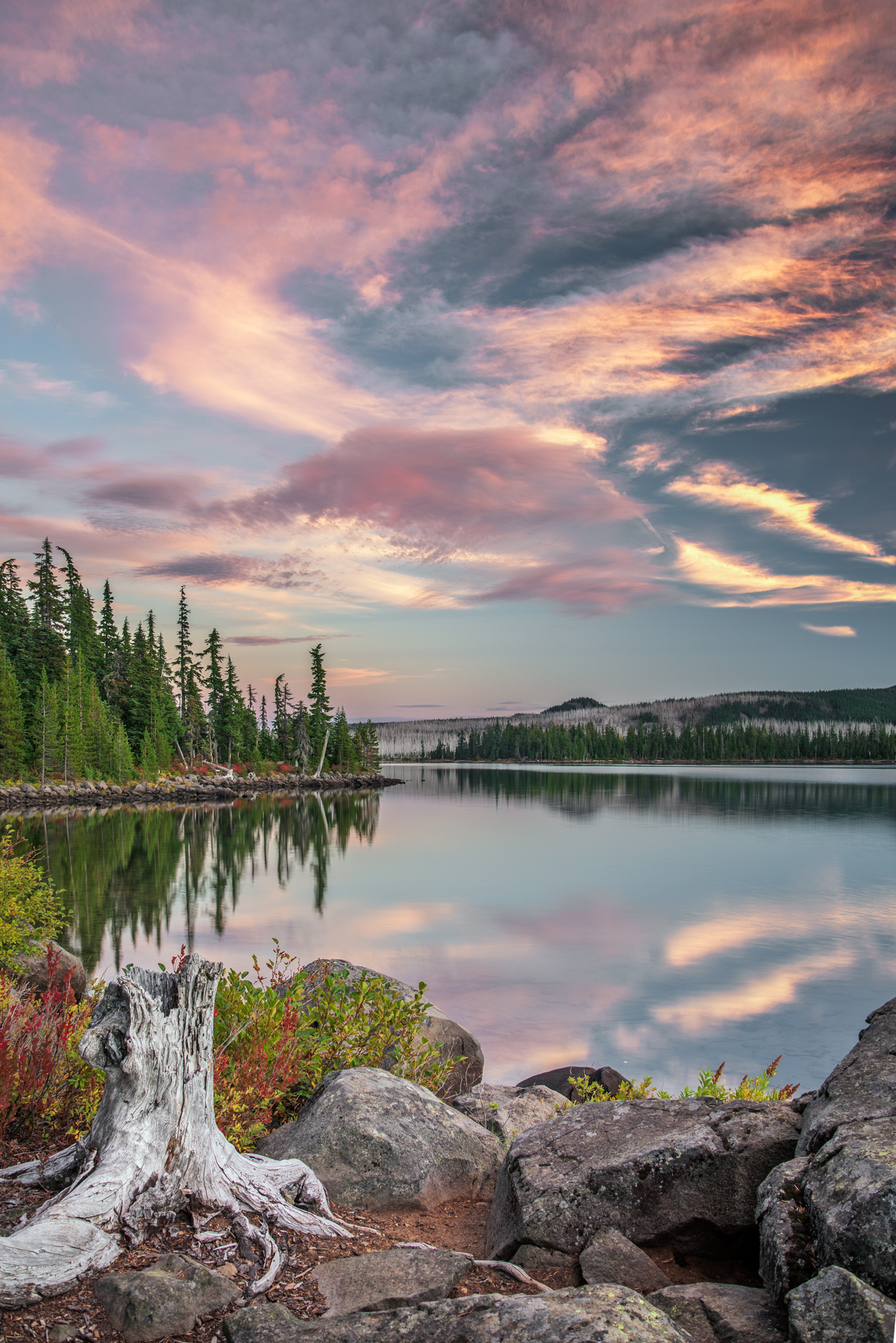 Ollalie Lake-6.jpg
