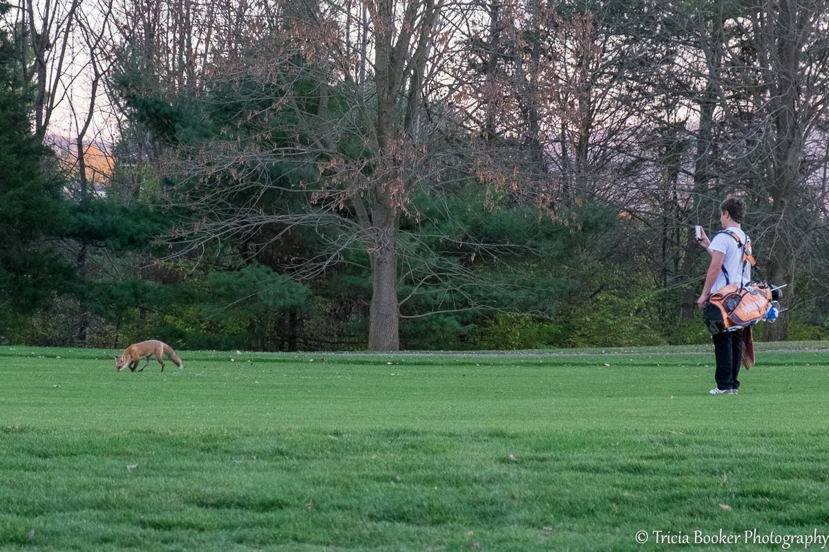 2015-11-05_GolfFox_Booker_0196.jpg