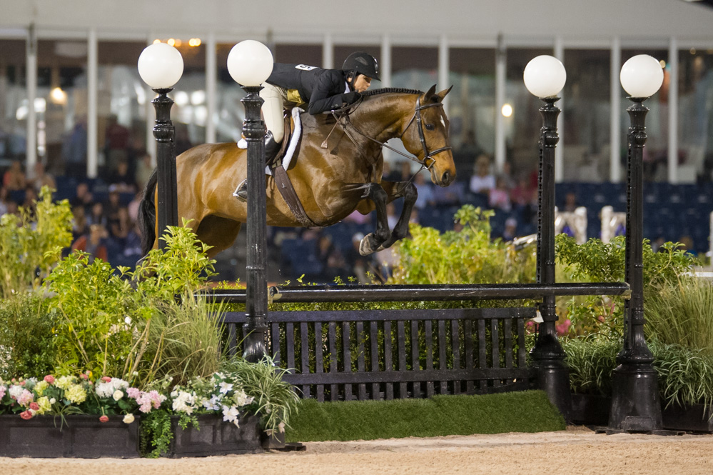 Congratulations to Laura Critz on the purchase of Quatrain! Best of luck in the Junior Hunters in 2014!