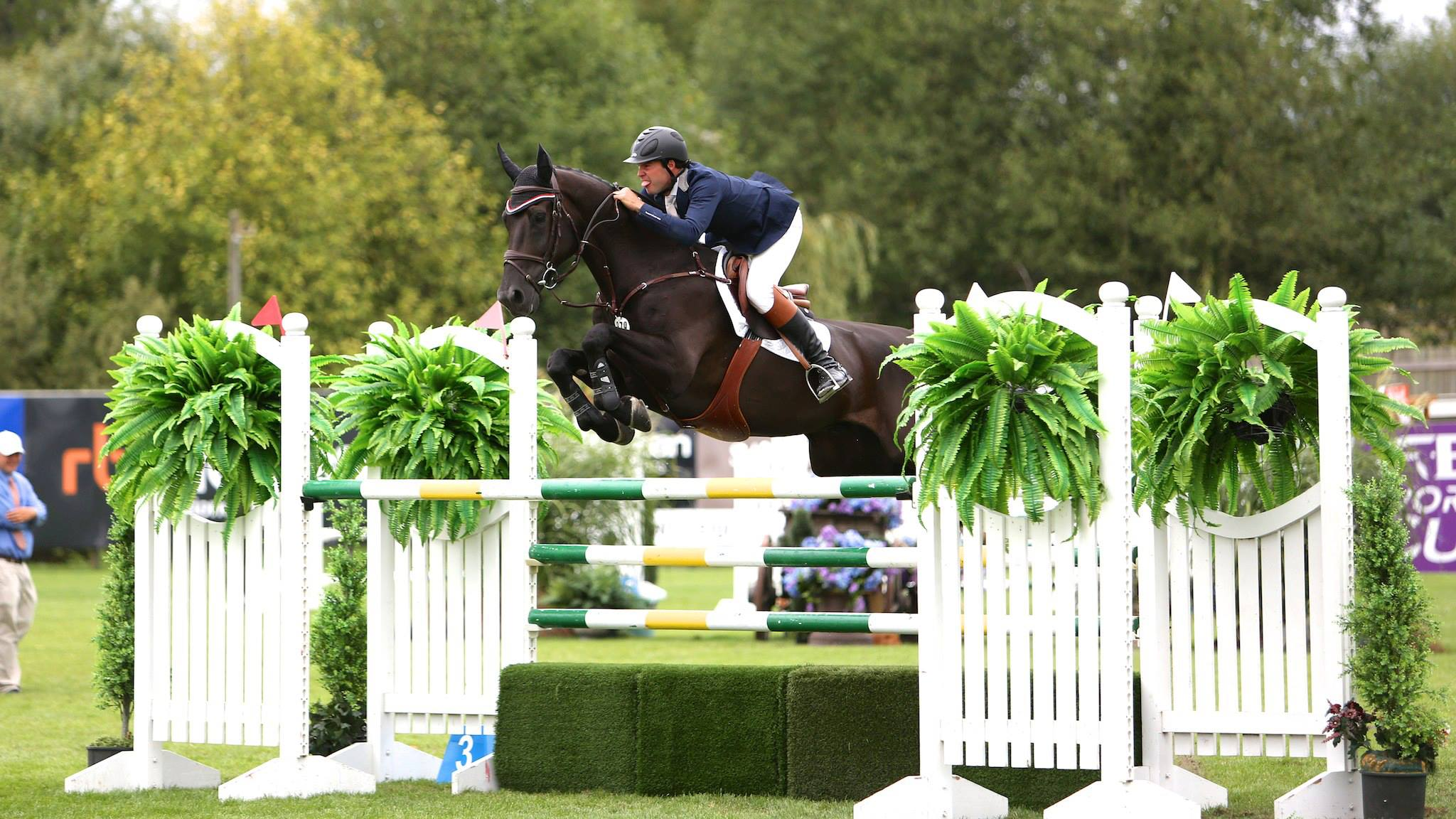 Jack Towell's son Hardin, a successful grand prix competitor, is now a full-time trainer based in Wellington, Florida.