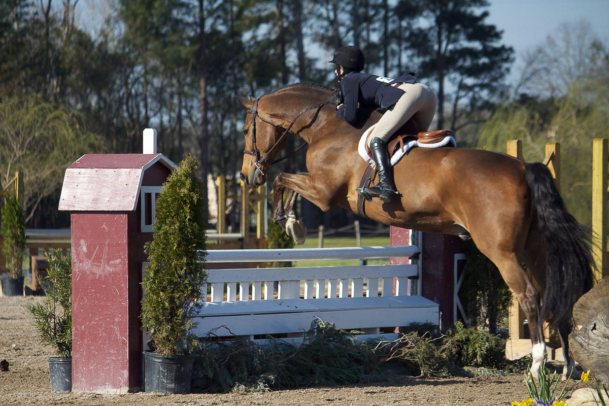 """Mary Carton Mitchener and Waccamaw jumped to success in the 3'3"""" Junior Hunters."""