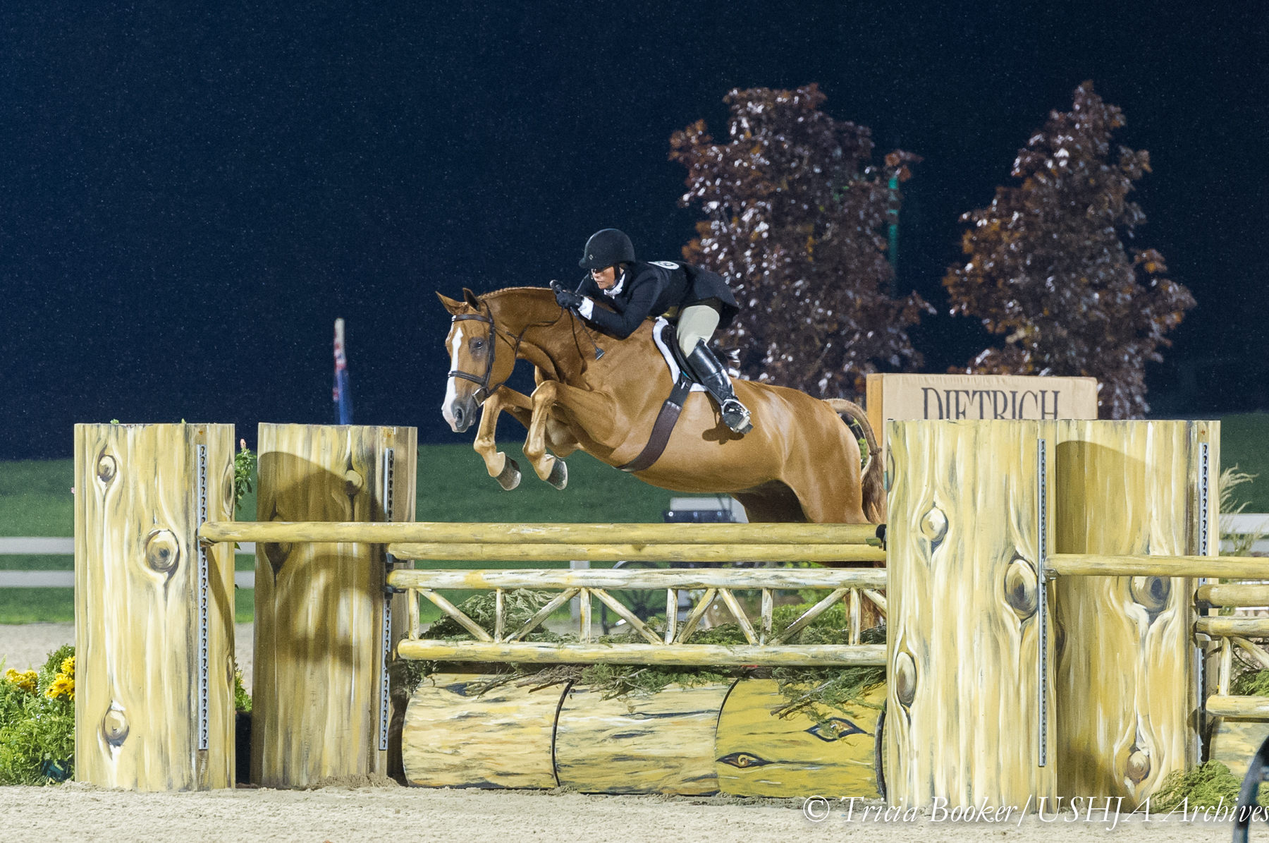 Jennifer Alfano and Jersey Boy in perfect form on the Handy Hunter course.