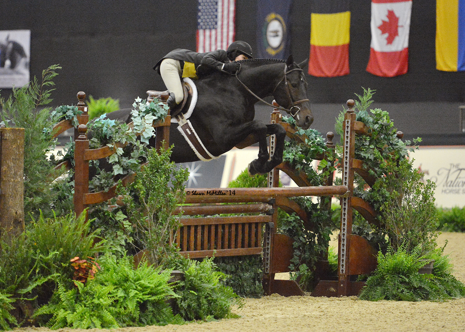 Liza Boyd and Pony Lane Farm's Mythical at the 2014 National Horse Show in Lexington, Kentucky.