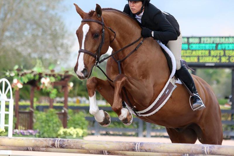 Liza Boyd and Chestnut Avenue - Photo courtesy of The Plaid Horse
