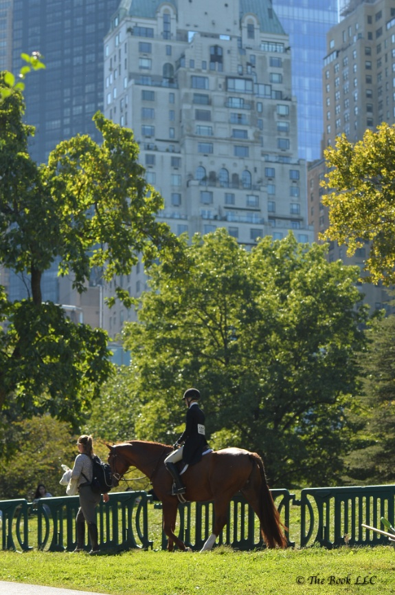 Walking through Central Park to the horse show