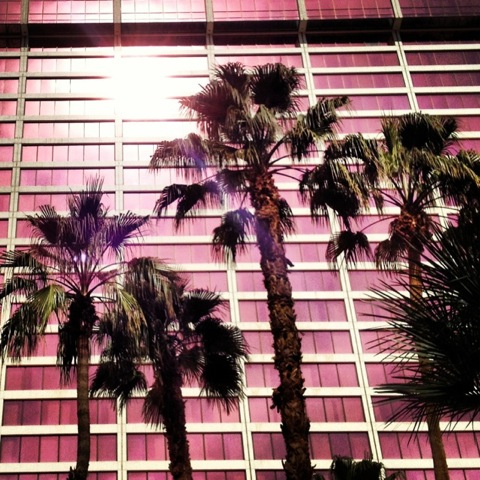 neon palm trees and las vegas