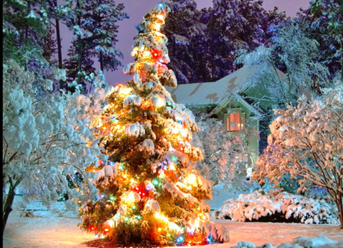 Holiday Lighting Tips ( Examiner )
