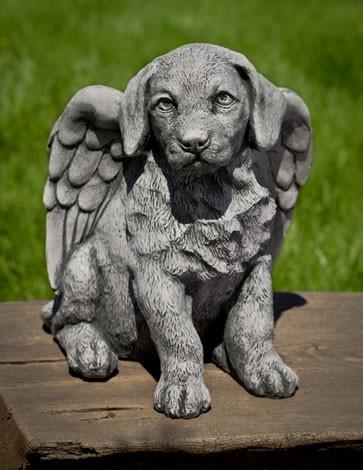 Angel Puppy