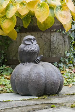 Owl on a Pumpkin