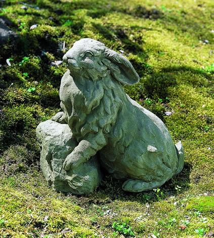 Rabbit on a Rock