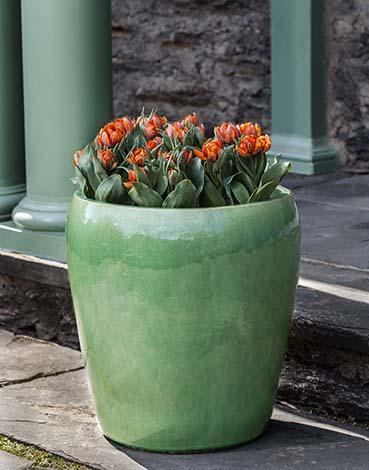 Ellesmere Planter