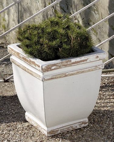 Square Rolled Rim Planter