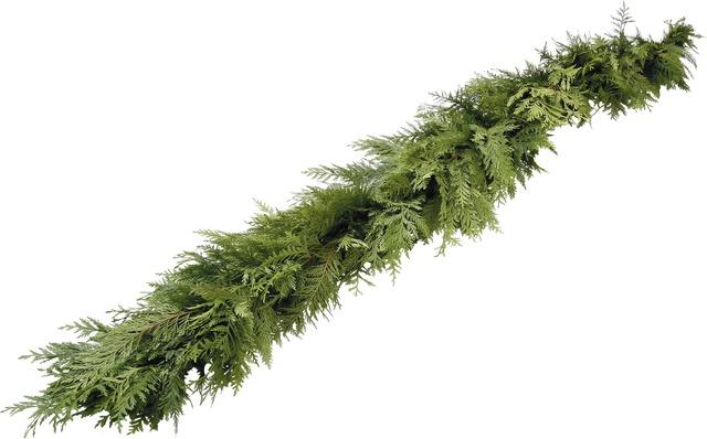 Cedar Garland - Fresh Western Red Cedar brings fragrance and enjoyment throughout the holiday season. Approximately 25' in length.$60
