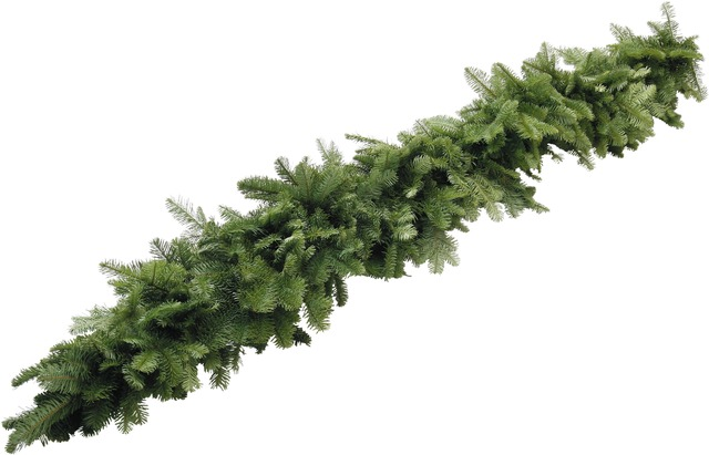 Noble Fir Garland - A heavy, lush Noble Fir garland. Approximately 25' in length.$100