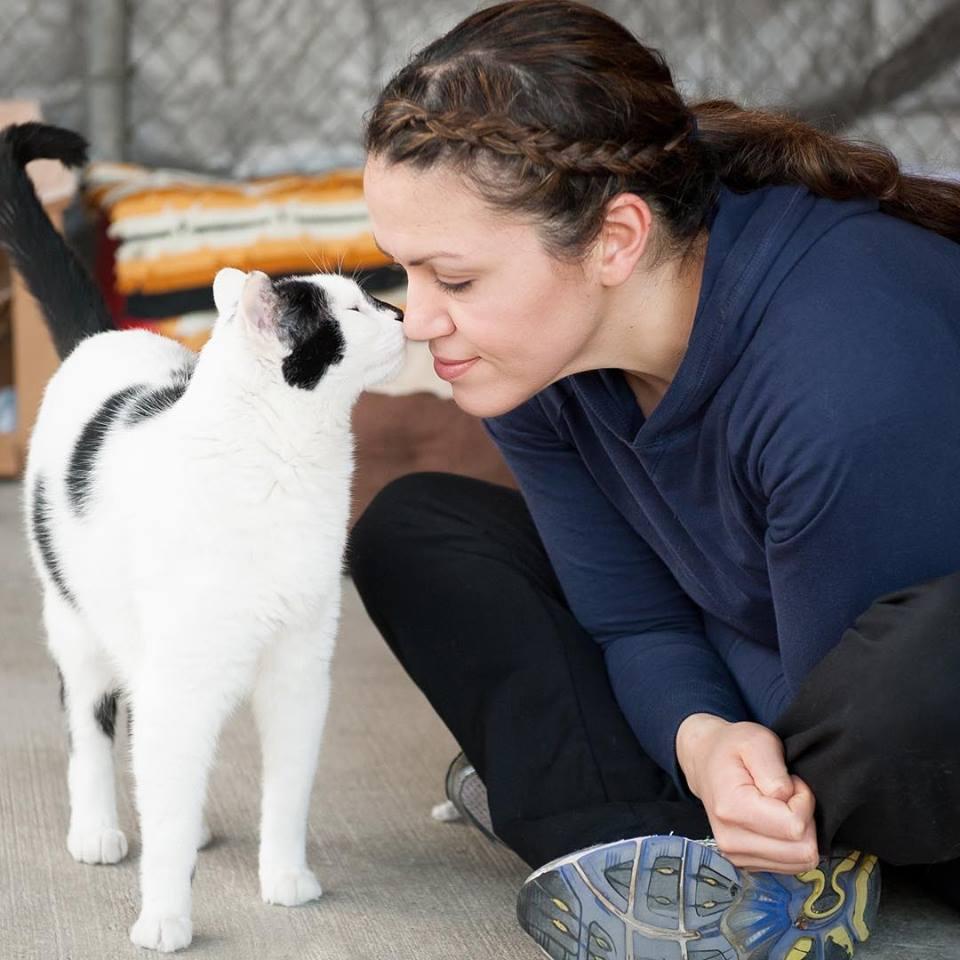 cat volunteer.jpg
