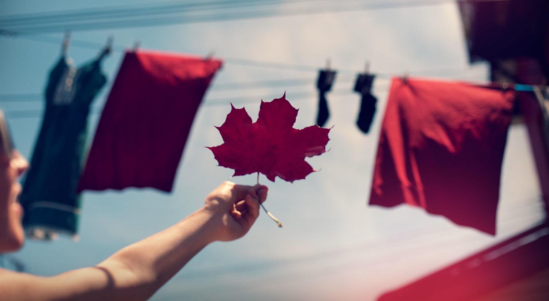 Happy-Canada-Day-shayne-gray.jpg